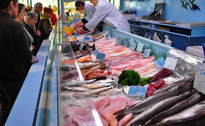 Fish-counter_406x250